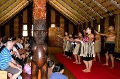 Motivi di Trattato di Waitangi fotografie stock libere da diritti