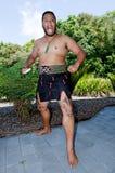 Motivi di Trattato di Waitangi immagini stock