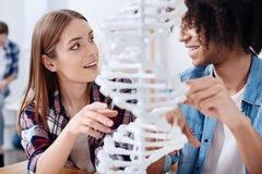 Motivierte unterstützende Studenten, die zusammen Genetik studieren lizenzfreies stockfoto