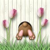Motivo de Pascua, parte inferior del conejito, tulipanes rosados e hierba fresca en el fondo de madera blanco, ejemplo ilustración del vector