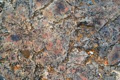 Motley abstrakt begrepptextur av en sten Arkivfoto