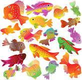 Motley aquarian small fishes. royalty free stock photo