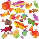 Motley aquarian small fishes. Royalty Free Stock Photo