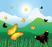Motley butterflies fly on a mountain meadow Royalty Free Stock Photo