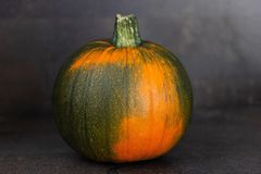 Motley pumpkin on dark background royalty free stock photography