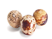 Motley quail eggs. On a white background Royalty Free Stock Image