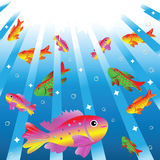 Motley small fishes in water. royalty free stock photography