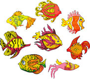 Motley tropical fish. Set of color vector illustrations royalty free illustration