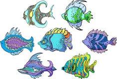 Motley tropical fish. Set of color vector illustrations vector illustration