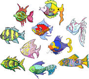 Motley tropical fish. Set of color vector illustrations stock illustration