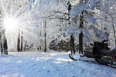 Moto de nieve en la esquí-pista del bosque Foto de archivo