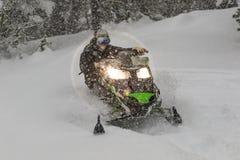 Moto de nieve en la velocidad mientras que está nevando en el bosque del pino imagenes de archivo