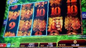 Moto della gente che gioca slot machine dentro il casin?, fuoco sullo schermo stock footage
