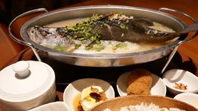 Moto della spigola cotta a vapore con le erbe ed il limone nel ristorante cinese interno di servire bianco del piatto stock footage
