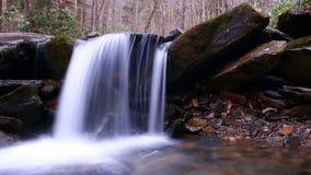 Moto vago e fotografia lenta di caduta dell'acqua di tempo di otturazione nella foresta Immagine Stock
