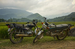 Motobike på norden av Vietnam Royaltyfri Bild