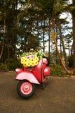 Motocicleta Fotos de archivo
