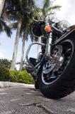 Motocicleta próxima acima com palmeiras imagem de stock