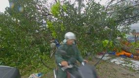 Motocicletas de la impulsión de los ciudadanos debajo del árbol caido en los alambres eléctricos