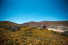 Motocicletas no vale do antílope, Califórnia Fotografia de Stock