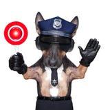Motocicletta del cane poliziotto Fotografia Stock