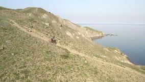 Motociclista in casco protettivo giù sul mountain bike giù la collina Baia pittoresca del mare stock footage