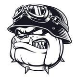 Motociclista del bulldog con il casco royalty illustrazione gratis