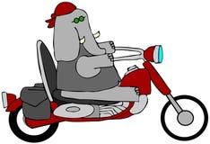 Motociclista dell'elefante illustrazione vettoriale