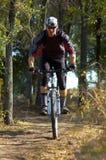 Motociclista no trajeto de floresta Fotos de Stock