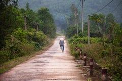 Motociclista vietnamita sulla bicicletta, tonalità, Vietnam fotografia stock