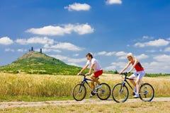 Motociclistas Imagem de Stock Royalty Free