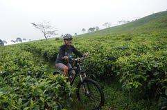 Motociclistas da montanha Fotografia de Stock