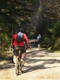 Motociclisti della montagna Immagine Stock