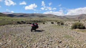 Motociclo alla natura Fotografie Stock