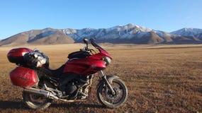 Motociclo alla natura Immagine Stock