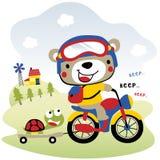 Motociclo di guida del ` s dell'orso Fotografia Stock