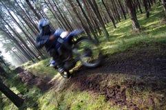 Motocrós a través del bosque Imagen de archivo libre de regalías