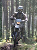 Motocross attraverso la foresta Fotografie Stock Libere da Diritti