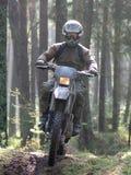 Motocross durch Wald Lizenzfreie Stockfotos