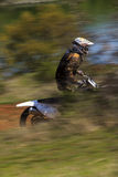 Motocross-extreme. Royalty Free Stock Images