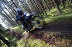 Motocross through forest. A motocross bike speeding through a forest Royalty Free Stock Image