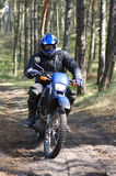 Motocross through forest. A dirt bike (motocross) speeding through forest stock images