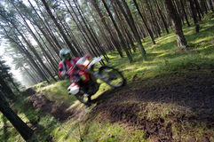 Motocross through forest. A motocross bike speeding through a forest stock photos