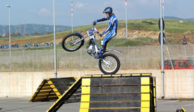 Motocross freestyle Royalty Free Stock Image