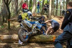 Motocross jeździec przy Drapaka rodeo rasą Zdjęcia Stock