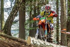Motocrossreiter am Drapak-Rodeo-Rennen Stockbild