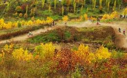 Motocrossspår Royaltyfri Foto