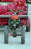 Motocultivator pour l'agriculture et comme machine de transport Photographie stock libre de droits