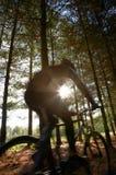 motocyklista góry Zdjęcie Stock