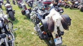 Motocyklu motocykl bawi się z koniem Obraz Royalty Free